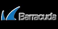barracuda networks e1590582388431